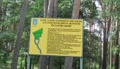 Натальевский парк (2)