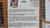 Зоопарк (экопарк) Фельдмана (22)