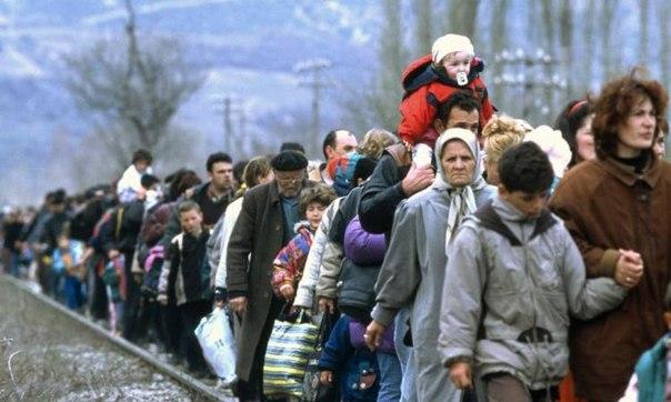 беженцы-01