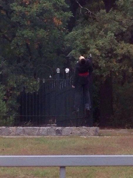мужчина на заборе-2