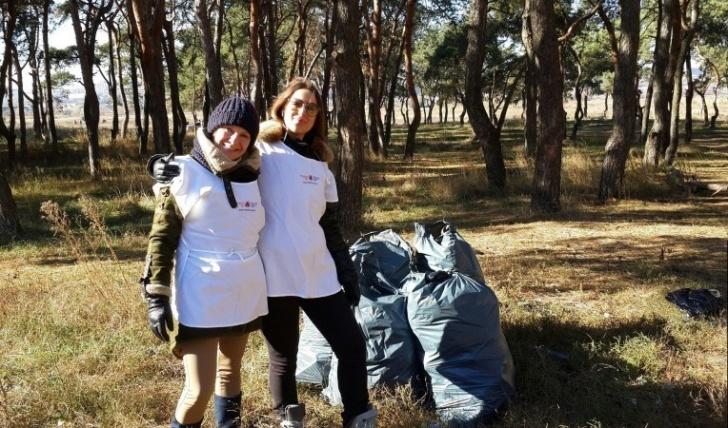Чистый лес-02