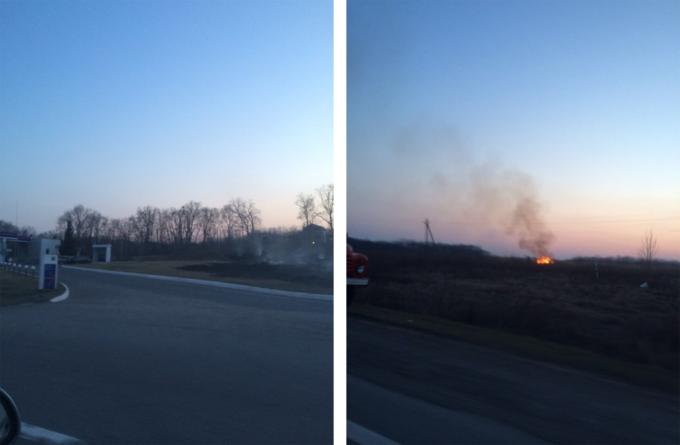 пожар на поле-1