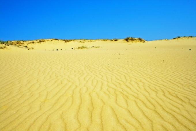 Алешковские пески в 30 километрах от Херсона