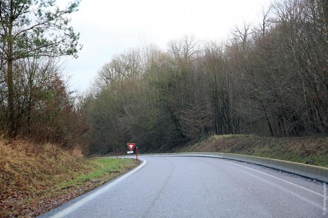 Франция: лесная наклонная дорога с высоким бордюром. Фото: Артемий Лебедев.