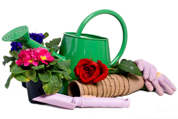 Товары для дачи и сада