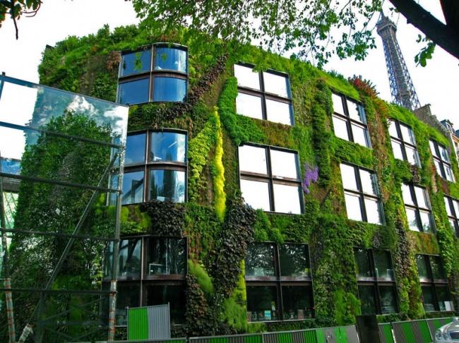 Музей на набережной Бранли, Париж. Пример вертикального озеленения Патрика Бланка. Фото: www.adme.ru