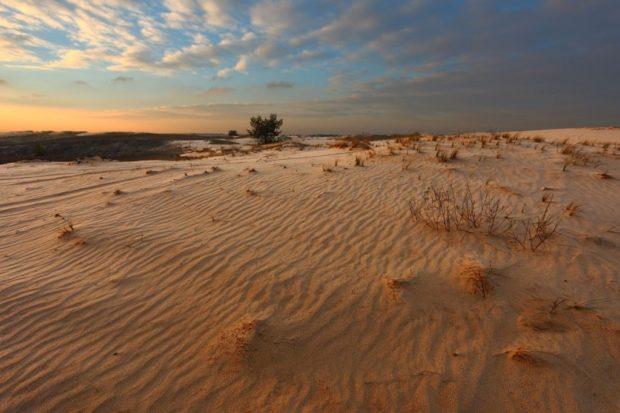 Харьковская пустыня