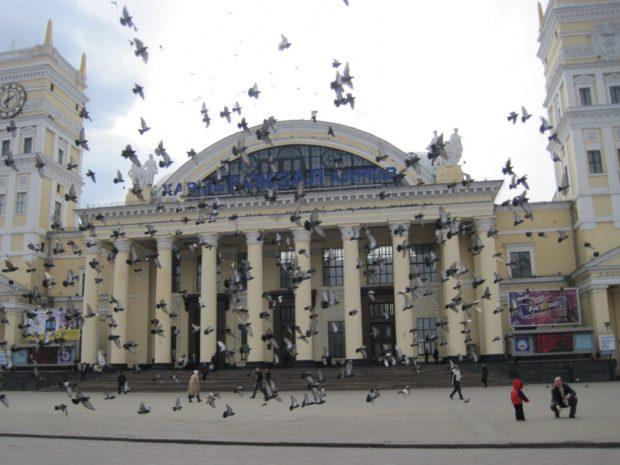 Голуби в Харькове