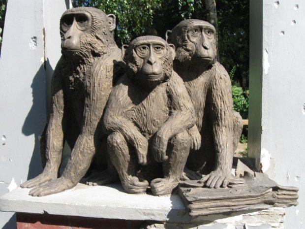 памятник обезъянам