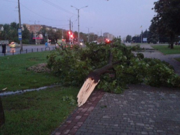 Фото: Типичный Харьков