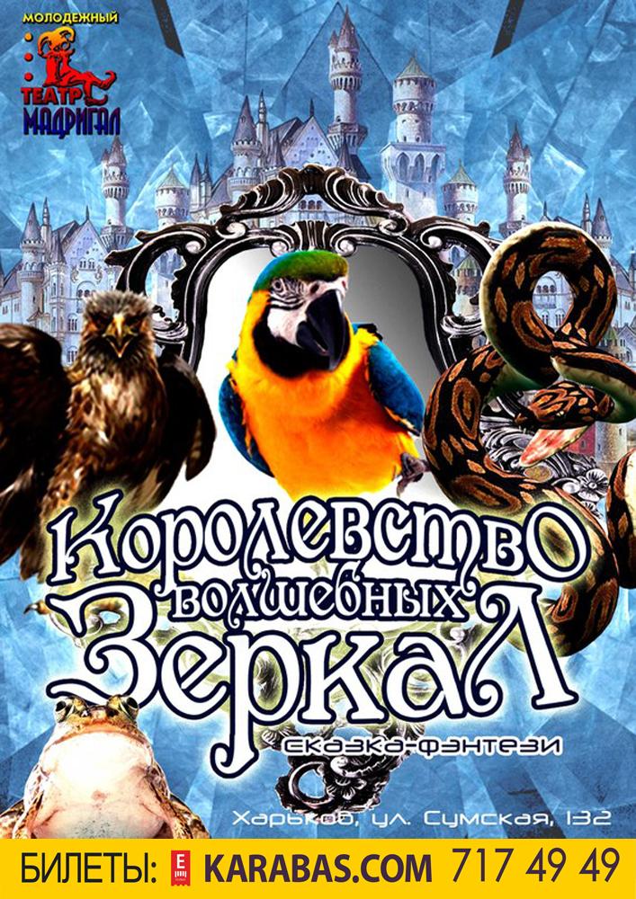 Королевство волшебных зеркал Харьков