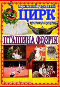 """Цирк """"Пташина феєрія"""" Харьков"""