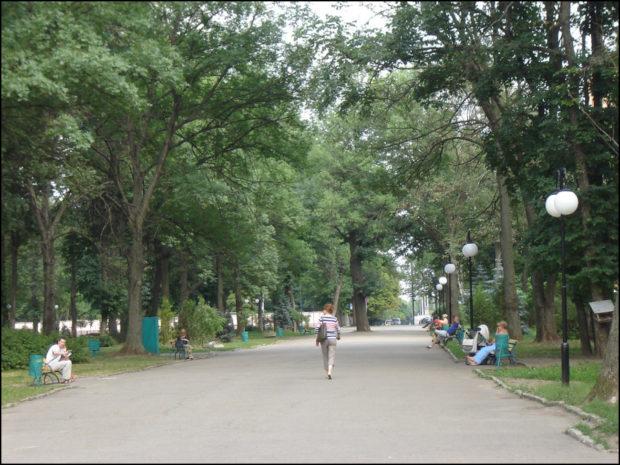 Molodezhnyj-park-glavnaya-alleya-foto-62