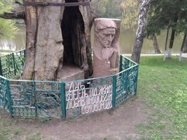 Дуб возле которого любил работать Г. С. Сковорода