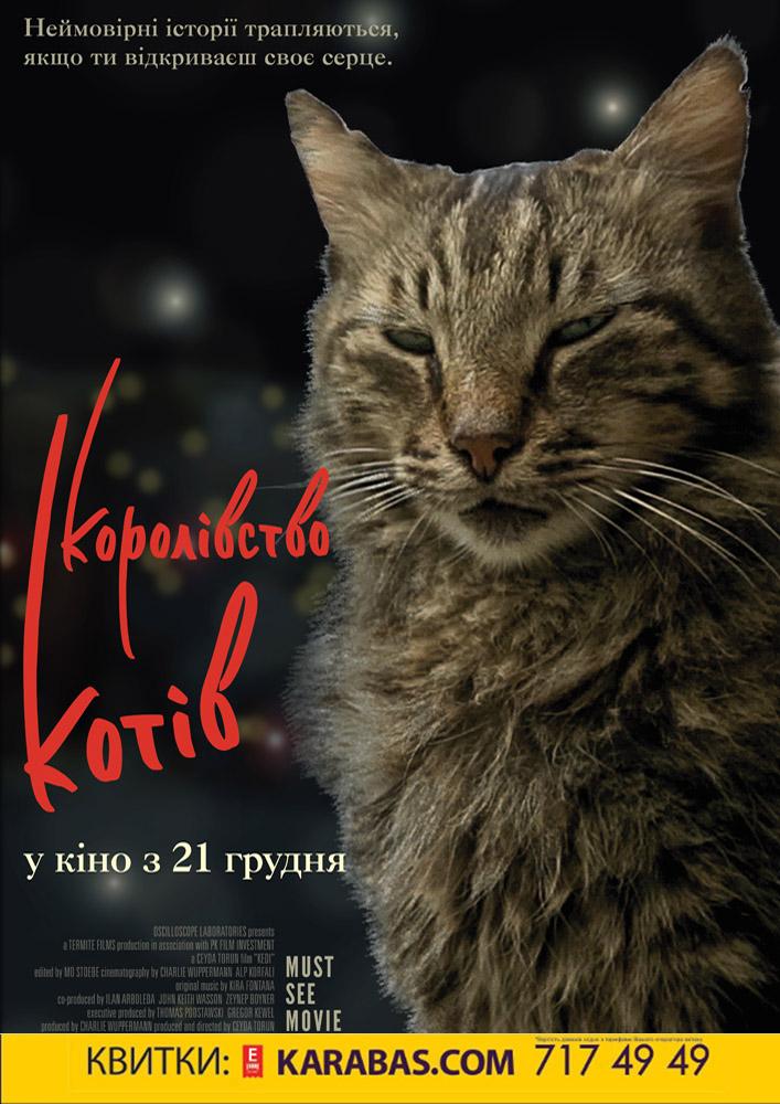 Королівство котів Харьков