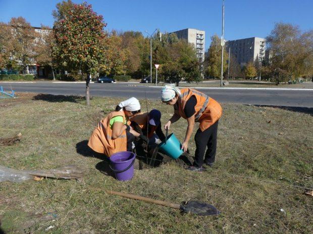 В городе на Харьковщине высадили саженцы для аллеи сакур