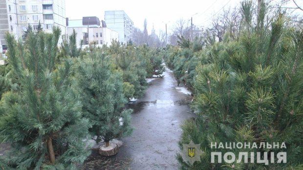 На харьковских рынках проверяют законность торговли елками