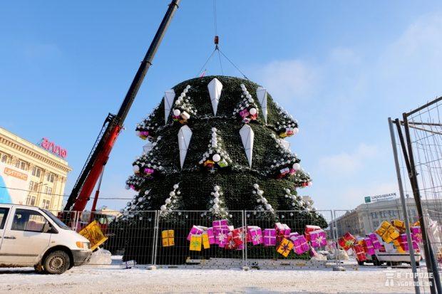 Новая елка в Харькове стоит дороже, чем елка Нью-Йорка