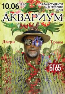 Аквариум, юбилейный тур - БГ65 Харьков