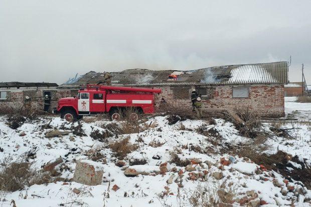 Под Харьковом масштабный пожар на свиноферме