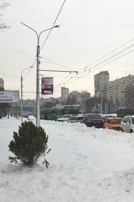Специалисты парковки 80-го уровня: на Алексеевке автомобили заблокировали движение троллейбусов