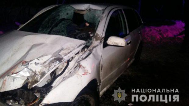 На Харьковщине водитель Skoda Fabia насмерть сбил мужчину