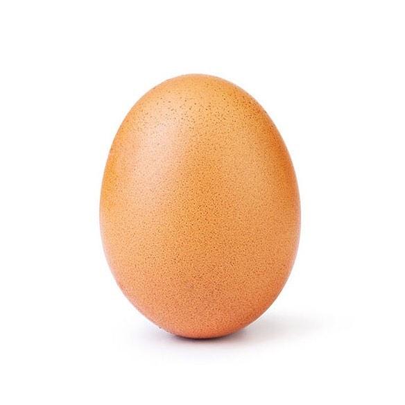 Курица бросила пить и решила установить рекорд в Instagram: ее яйцо собрало более 50 млн лайков