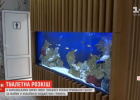 В парке Горького в туалете за 6 млн гривен поют птички и есть аквариум