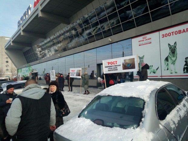 В харьковском супермаркете травмировало женщину: люди вышли на акцию протеста
