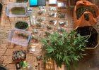 Харьковчанин обустроил нарколабораторию в собственном доме
