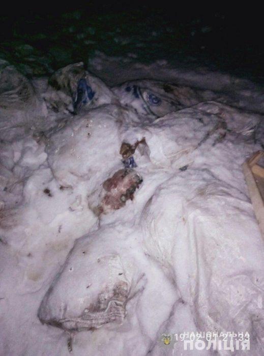 Чумная свинина в Харькове: эксперты проверили 5 тысяч дворов