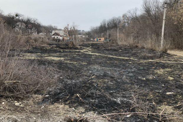 Под Харьковом в очаге пожара сухой травы погиб человек