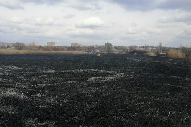 В Харькове сухая трава полыхала на площади 1000 м²
