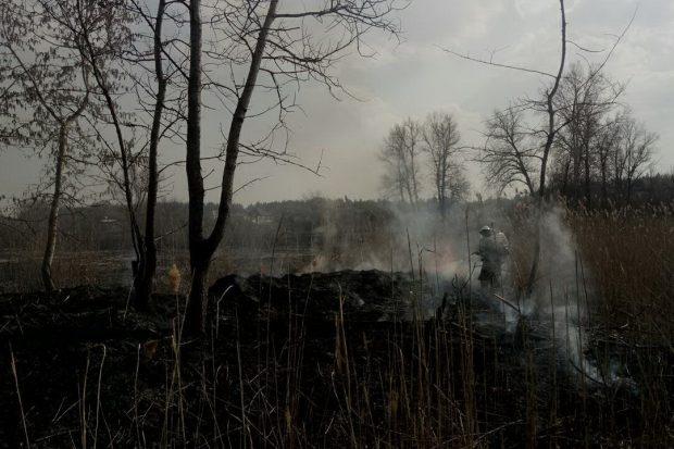 101 пожар вызвали жители Харьковщины, выжигая прошлогодний сухостой и мусор