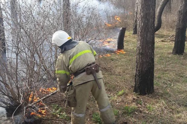 На Харьковщине продолжают активно выжигать сухостой: 64 пожара за сутки