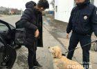В Харьковской области при получении взятки задержали командира взвода воинской части