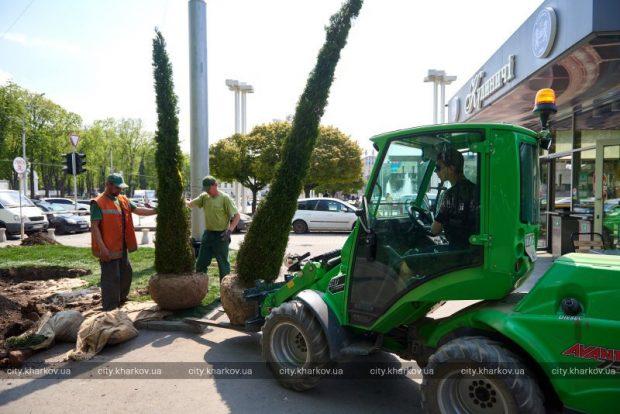 В саду Шевченко высадят 600 деревьев