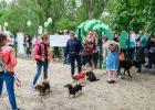 На Салтовке открыли площадку для дрессировки собак