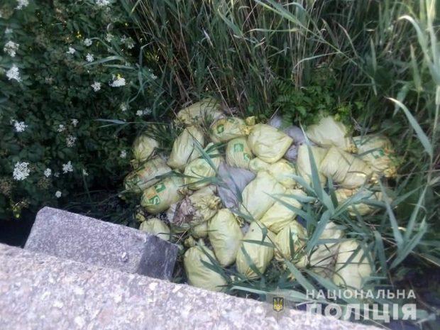 В Харьковской области на берегу водохранилища обнаружено туши кур
