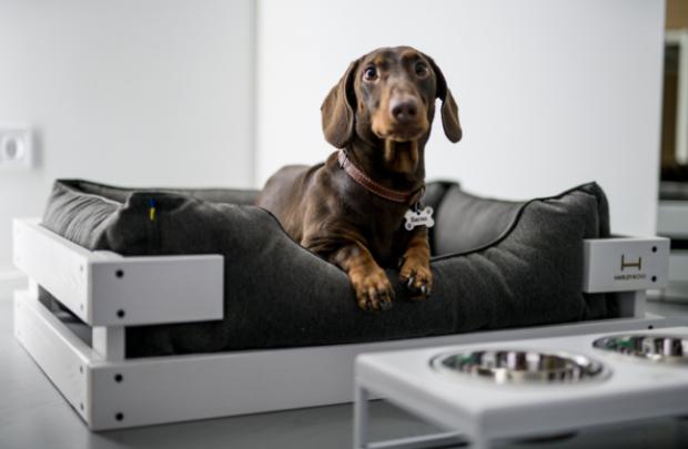 спальное место для вашей собаки