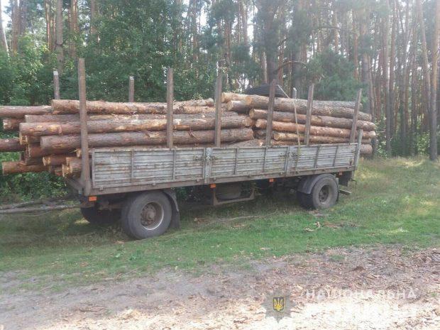 В Харьковской области полицейские задержали мужчин за незаконную вырубку леса