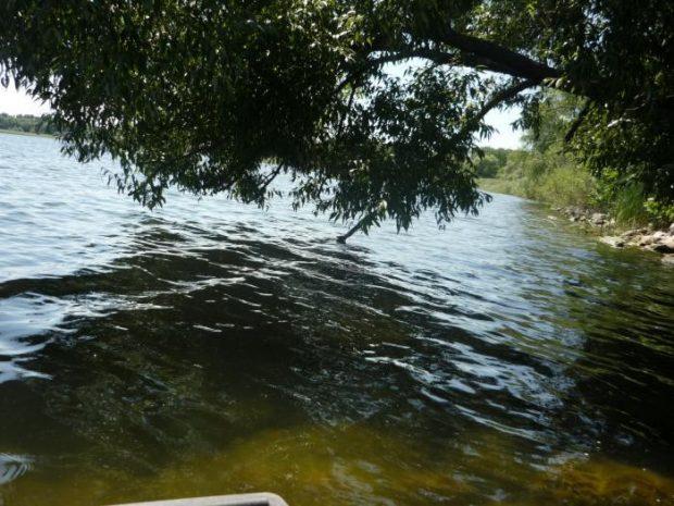 На Харьковщине обнаружили антиген гепатита в водохранилище