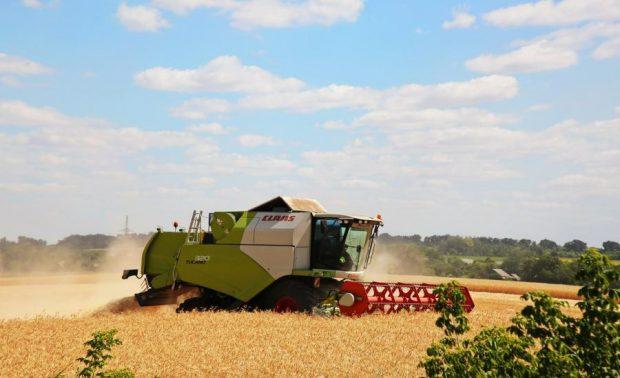 В области собрали уже 2 млн тонн зерна нового урожая