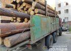 В Харьковской области продолжают выявлять факты незаконной перевозки древесины