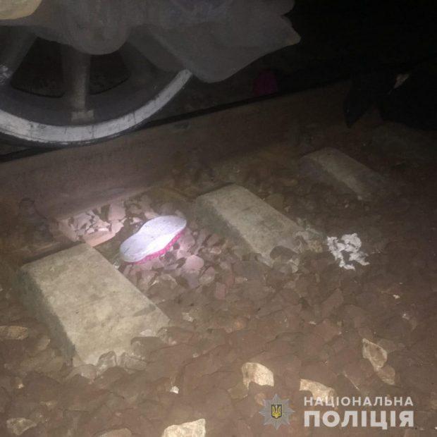 Под Харьковом поезд задавил женщину, которая неожиданно выбежала из кустов и легла на рельсы