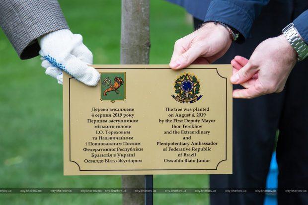 В парке Горького посадили дерево дружбы между Харьковом и Бразилией