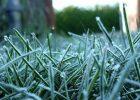 Завтра в Харькове - заморозки
