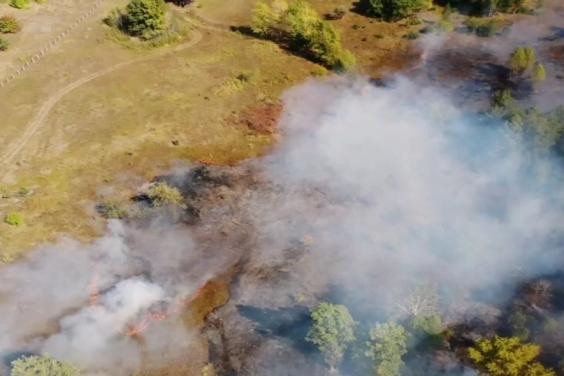 Пожар в Чугуевском районе ликвидируют 14 единиц спецтехники