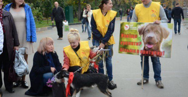 На площади Свободы прошла акция, посвященная Дню защиты животных