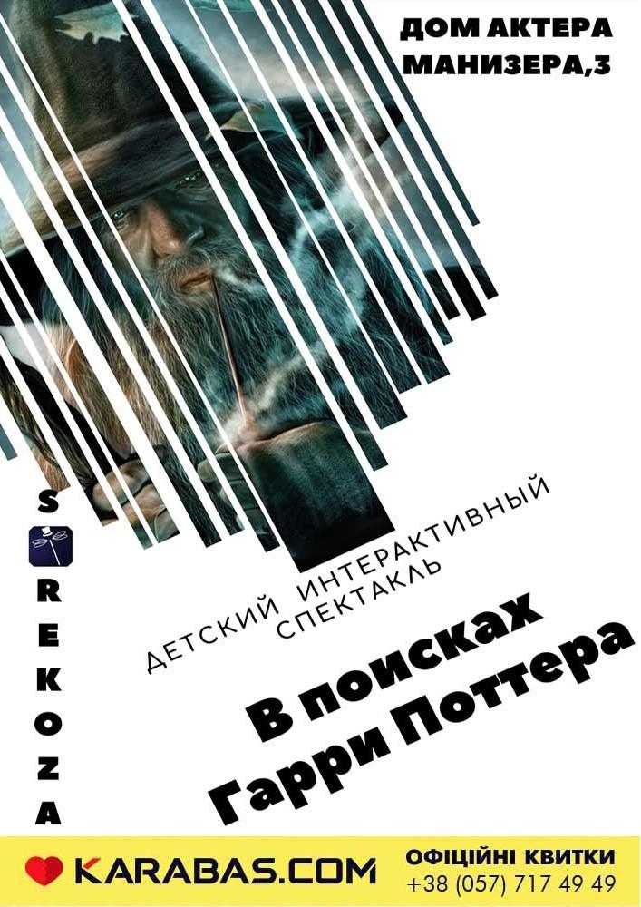 Театр магии «Strekoza». «В поисках Гарри Поттера» Харьков